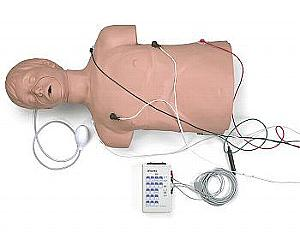 DEFIB./CPR TRAINING MANIKIN