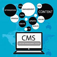 c. CMS Subscriptions